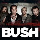 Bush 2011