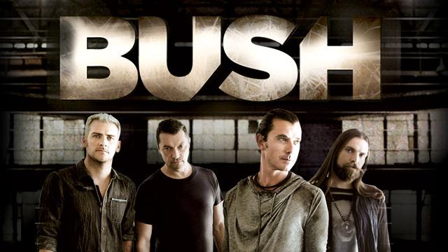 Bush 2013