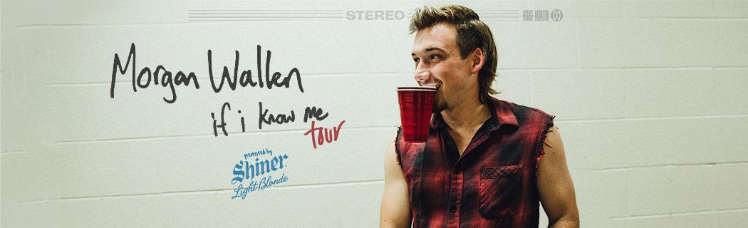 If I Know Me Tour