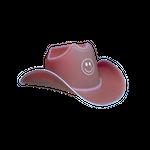 LIGHT-UP COWBOY HAT