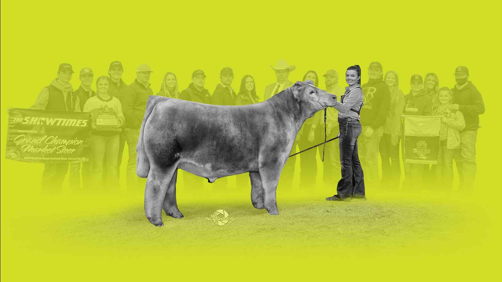 2020 American Royal Sale Results