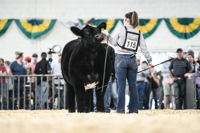 2021 Colorado State Fair Full Archived Live Videos!